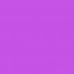Purple/Medium